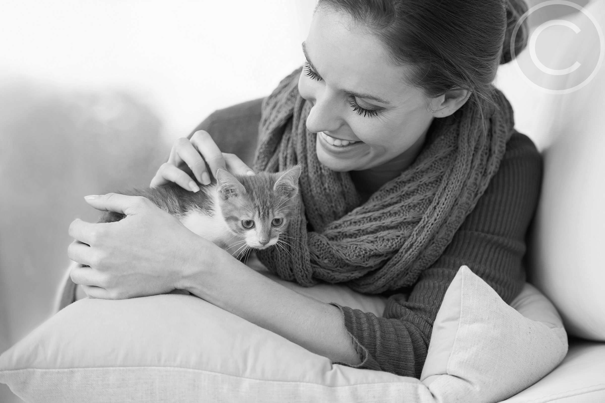 8 Tips for Taking the Perfect Photo of Pet
